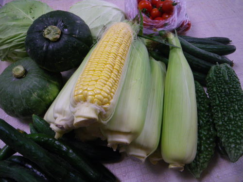 野菜814