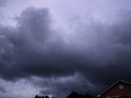 雨雲919