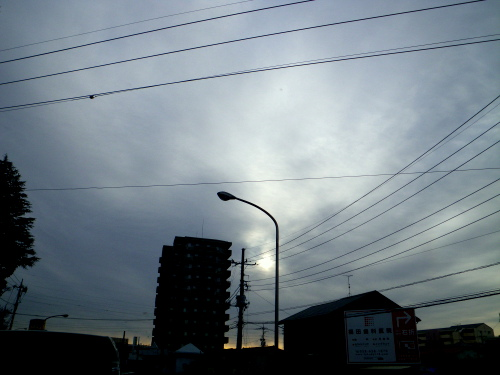 IMGP4397.jpg