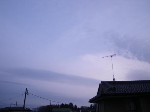 IMGP4669.jpg