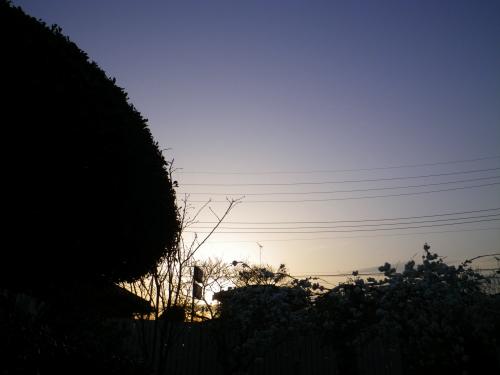 IMGP5430.jpg
