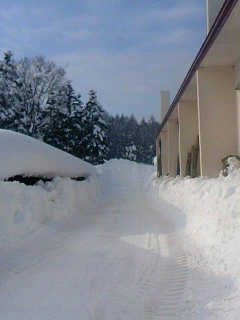 排雪 003