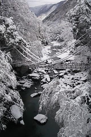 雪のかずら橋①