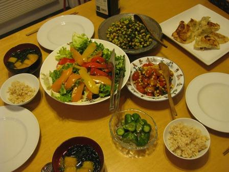 Vegetarian_dinner_1.jpg