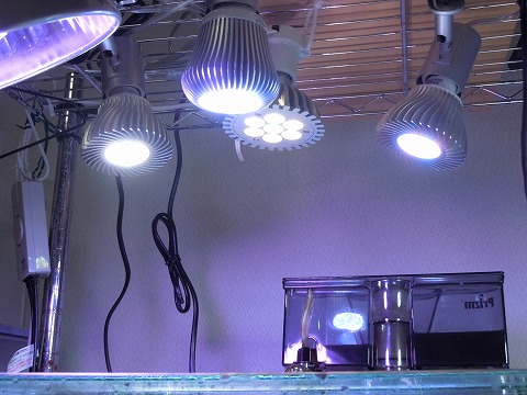 LED購入110204_03