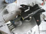 6月11日su-47-1