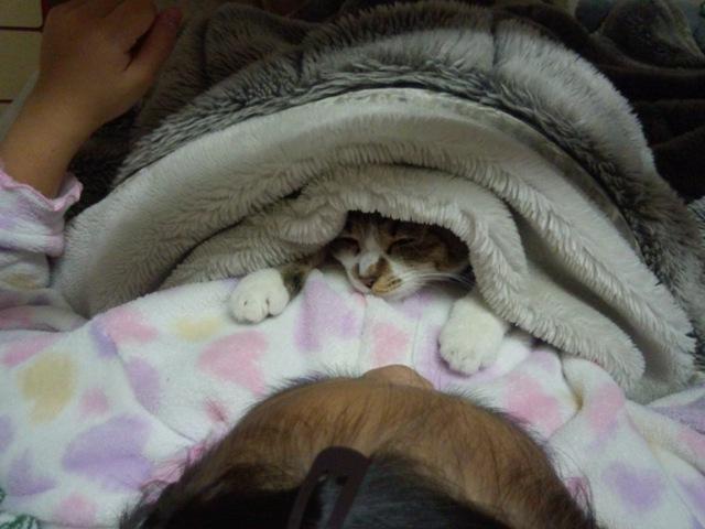 一緒に寝ちゃいました