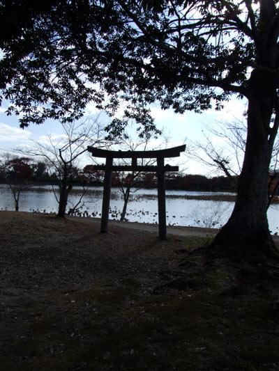 daikaku2_6.jpg