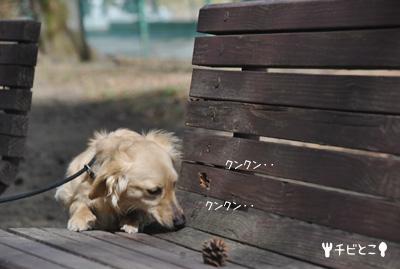 りっくん。。公園で♪