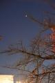 DSC_7159_convert_20131124101841.jpg