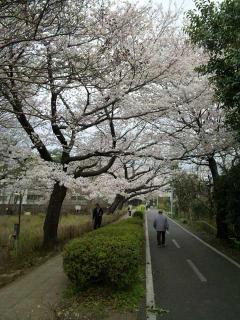 20100403_5.jpg
