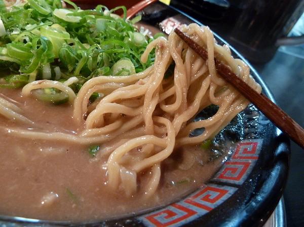 無鉄砲 ノーマルの中太麺