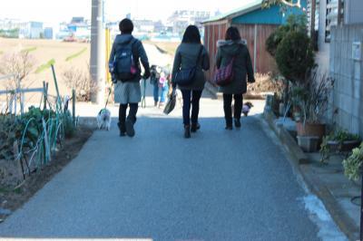 syukuchi-baosanpobu-9.jpg