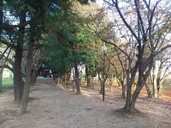 20111114La005.jpg