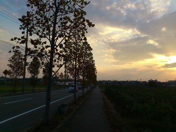 20111114La017.jpg