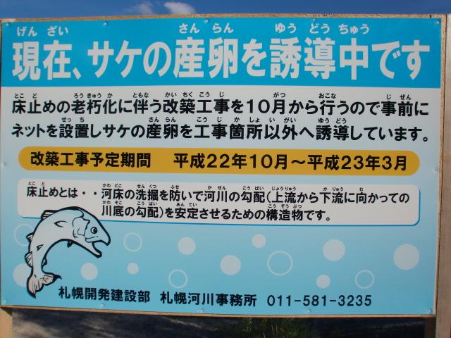 006_20100924183459.jpg