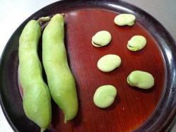 空豆の大きさ^^