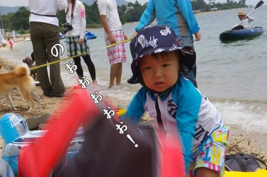 IMGP0051.jpg
