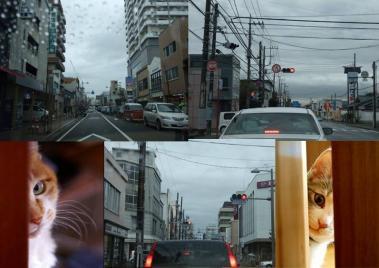静岡県東部地方の三島市の太陽光発電の京セラ加盟店を覗きに行く三島市内の様子完全無修正デジカメ編集写