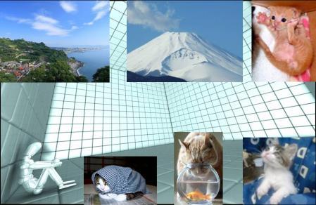 代表取締役社長K氏さんがアルコール依存症の疑いで悩む完全無修正静岡県の猫達と富士山写真