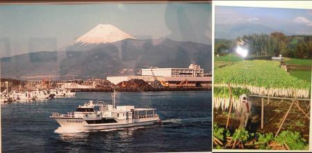 富士山の朝焼けと三島市の大根干し写真