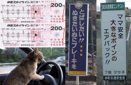 伊豆スカイラインで猫もスピードを飛ばしたい 抜きたい心にブレーキを ママ安全 大きなボインのエアバックの安全標識完全無修正デジカメ写真画像