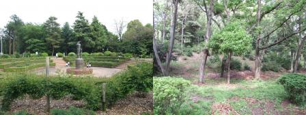 広見公園の中心にあった記念碑と緑の香りが感じた場所の写真