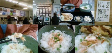 さくらえびの定職を愛鷹パーキングエリアで食べる完全無修正写真
