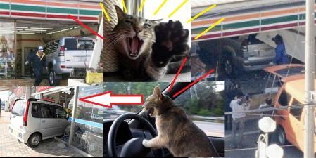 猫も驚く福島県郡山市のコンビニエンスストアにアクセルとブレーキの踏み間違いで突っ込む完全無修正猫も注意の写真