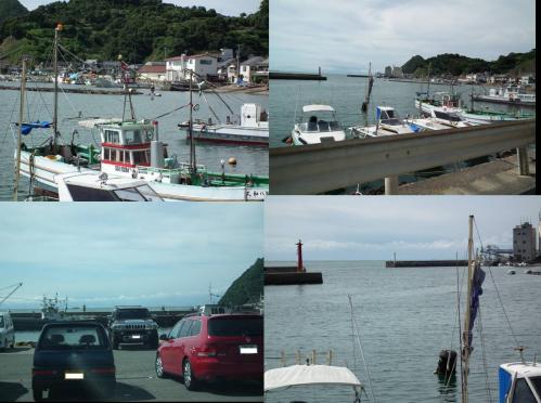 江之浦付近の漁港にて釣りする県外の観光客が多かったのだ