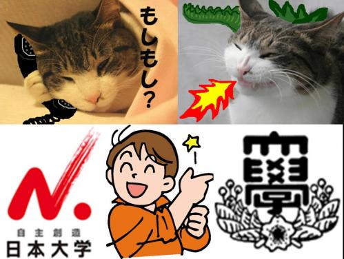 大阪出身在住の日本大学工学部後輩から電話があり大阪市の情報を聞いた