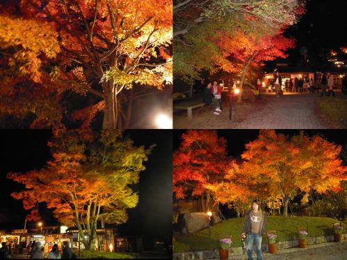 紅葉狩りまくる方々の風景写真と嫁の記念写真