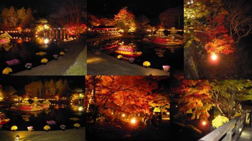 紅葉狩りで虹の郷の池の廻りのライトアップされた紅葉風景写真