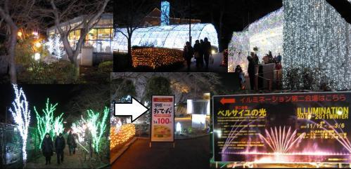鮮やかなイルミネーションのトンネルを抜けると靜岡おでんが販売されており次にはベルサイユの光のイルミネーションがあったのでした