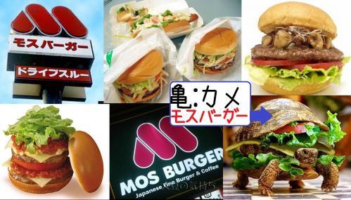 よく食べに行くモスバーガーは非常にボリュームあり美味いがCGだろうよカメそう亀のボリュームあるモスバーガーかよおいおい