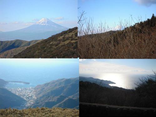 富士山が一望できる達磨山付近から撮った鮮やかな海辺と富士山の写真です