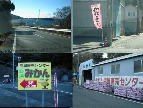 駿河湾特産の桜えびも販売されてたが西浦みかん問屋直売センターでみかんを買うことにした時の写真です