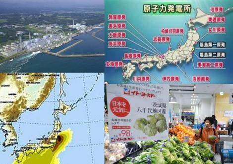東京電力より原発の問われる世界にもたらす安全性と風評被害の写真画像