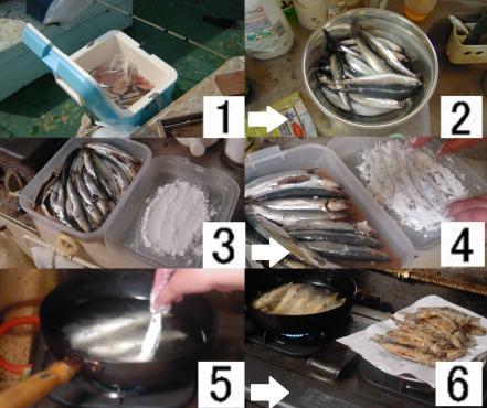 釣れたイワシとサバの嫁の料理で揚げる順序の写真