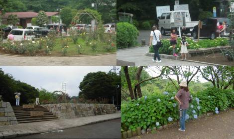 梅雨時の岩本山公園の入り口付近の写真です