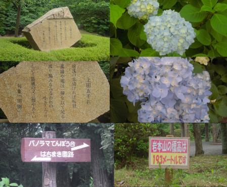 公園内の石碑に上田五千石の句集 田園 とパノラマ展望台と岩本山の標高の看板の写真