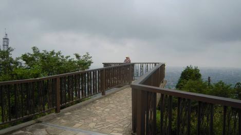 岩本山公園の展望台の写真