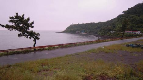 川奈の海の素敵な景色の写真