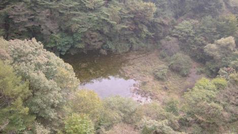 幻の富士六湖たる赤池のデジカメ写真