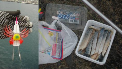 熱海港釣り施設釣りコンテストでのタコ釣り釣り道具をデジカメ写真で