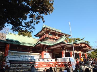 13富岡八幡宮0113