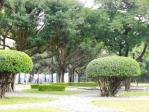 CIMG2632前庭園2