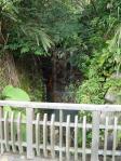 一番奥にある小さな滝