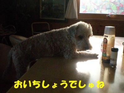 ブログ21 001