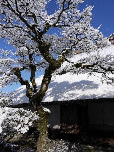 河之内・惣河内神社・一畳庵雪景色 130118 05